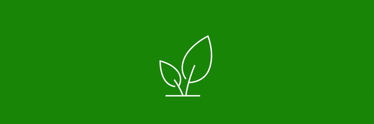 Ympäristökasvatus lehti-ikoni vihreällä taustalla.